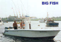 giant tuna fishing charter
