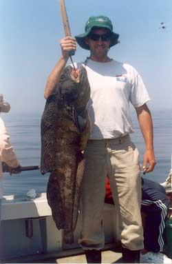 2006 massachusetts saltwater fishing report for Ma fishing report