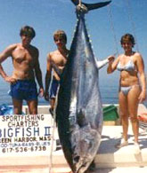 Fishing for Huge Tuna