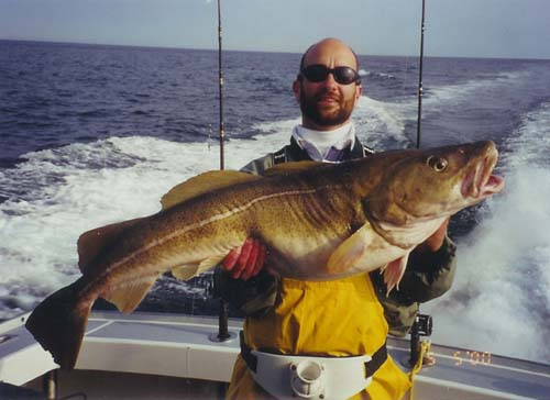 Yakalanmış Büyük Balık Resimleri