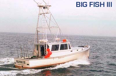Deep sea boats for sale eastern cape best small boats for for Deep sea fishing boats for sale