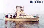 cape cod fishing charter boat