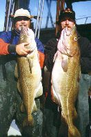 Cod Fishing Charters from Big Fish II