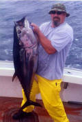 School tuna catch off the Cape