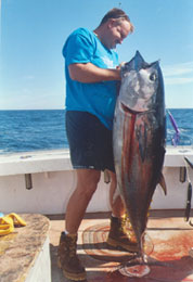 blue fin tuna catch