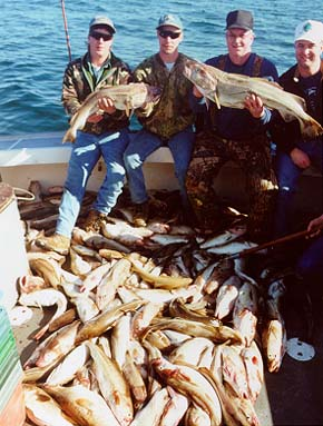 Cape cod sportfishing take part in a new adventure off for Fishing charters plymouth ma